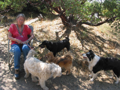 Charlotte with the dogs, August 2011